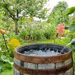 Garden Rain Barrel