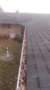 Maple Leaves Clog Unprotected Gutters