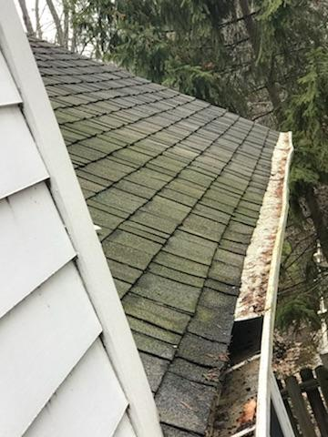 Clogged & Sagging Gutters Damaging this Home - Before