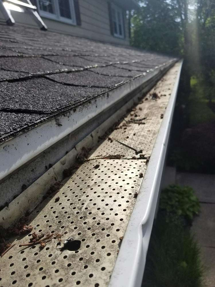 Gutter Guards Replacement - Before