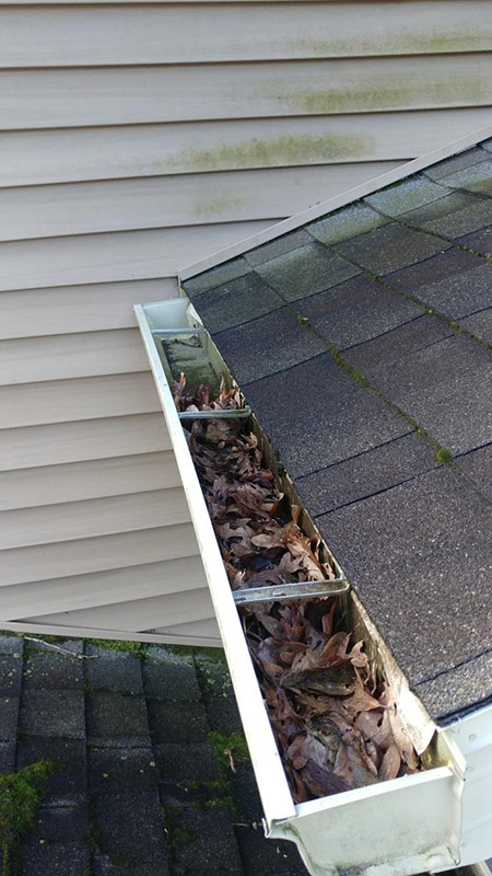 Home Gutters Leaf Guard - Before